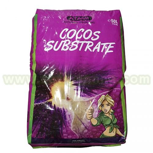 COCO B'CUZZ 50 L