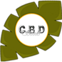 CBD Seeds regulares